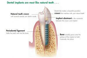 HOME - Surrey Dental Specialists